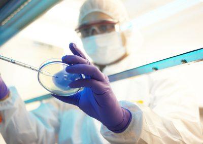 Mini-cerveaux cultivés en laboratoire : un problème de conscience ?