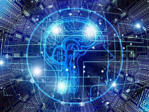 « L'intelligence artificielle n'a rien à voir avec celle des humains »