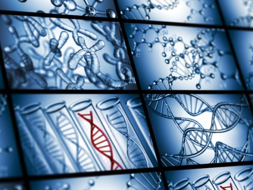 Projet de loi bioéthique : don d'organes, DPN, IMG, tests génétiques sont aussi au programme [décryptage 3/3]