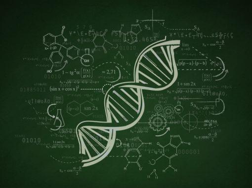 Un chromosome humain a été séquencé en totalité