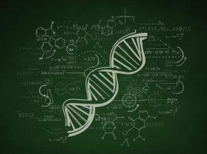 02_genome