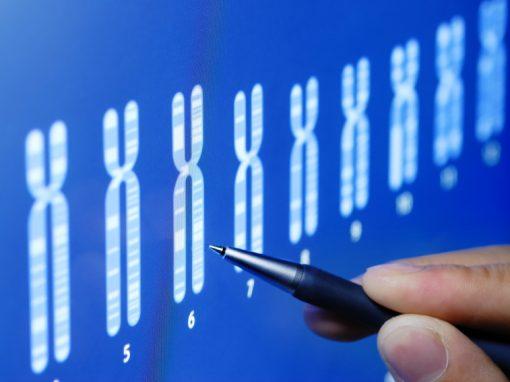 DPI : une intelligence artificielle pour trier les embryons ?