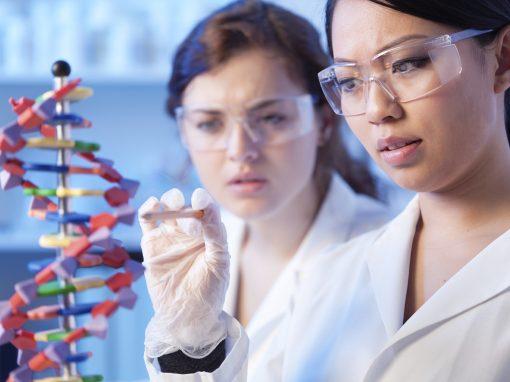 """Bébés génétiquement modifiés : aux Etats-Unis, le directeur des National Institutes of Health réclame """"un moratoire d'au moins cinq ans"""""""