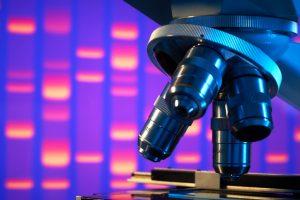 15_Cellules_souches_ADN_genethique