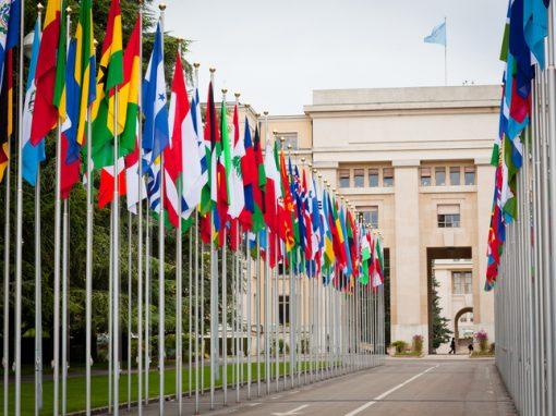 """ONU : le """"droit à la vie"""" sur la sellette"""