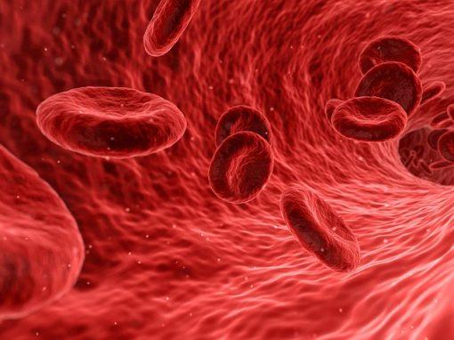 Guérir la drépanocytose avec CRISPR-Cas9 ? Une première patiente traitée aux Etats-Unis