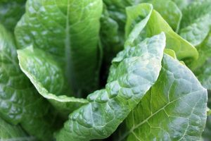 green-vegetables-1149790_960_720