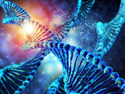 L'empreinte génomique parentale et la « symphonie de la vie »