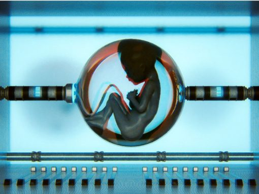 Utérus artificiel : mythe ou réalité ?