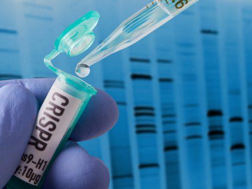 Des parents russes se portent volontaires pour des modifications de leurs futurs bébés avec CRISPR-Cas9