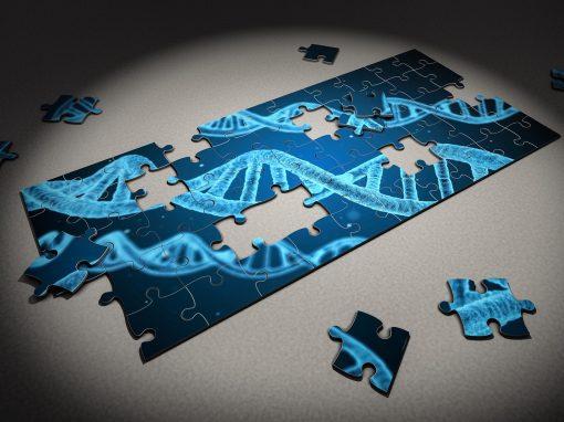 Le ministère de la Santé britannique veut étendre le séquençage à des « volontaires génomiques »