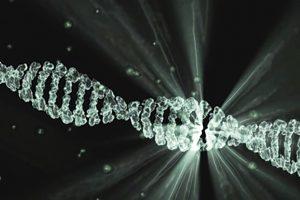 Vers l'utilisation de CRISPR pour traiter le Covid-19 ?