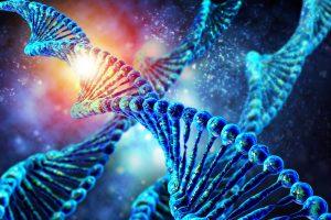 Une thérapie génique délivrée directement dans le cerveau