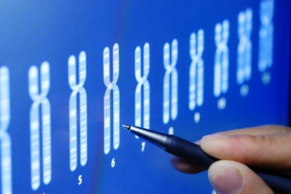 « Score de risque polygénique » : vers la naissance d'un bébé « parfait » ?