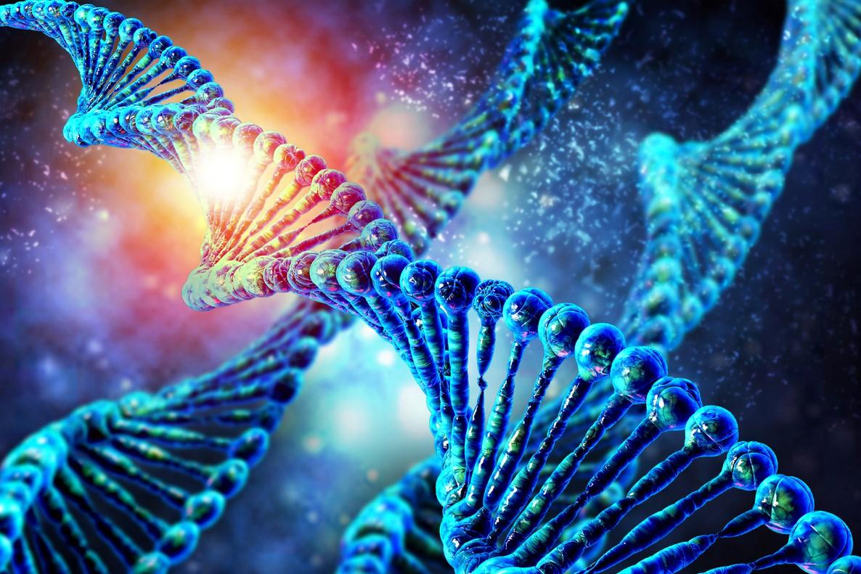 L'ARNi : une technologie prometteuse ?
