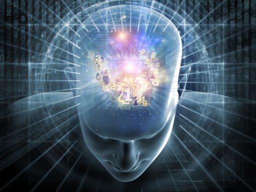 Le Chili veut garantir les droits du cerveau